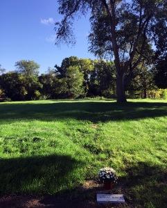 Burial Row 2 as found by Ground Penetrating Radar